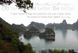 I alone cannot change the world, but i can cast a stone across the waters to create many ripples-Mother Teresa