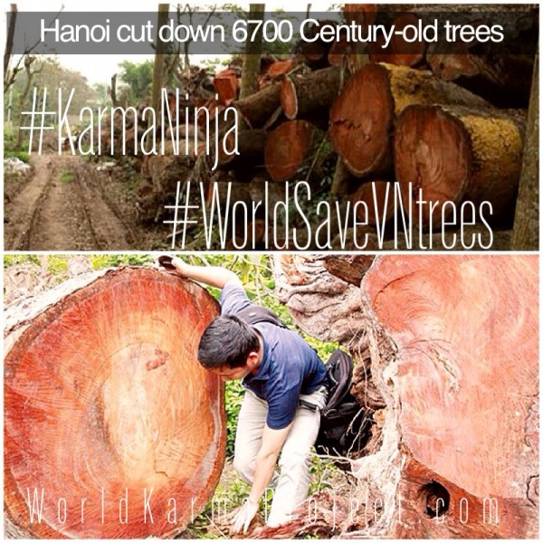 WorldSaveVNtrees  - HaiNoi city are cutting down 6,700 100-years-old Trees that were planted during colonial rule